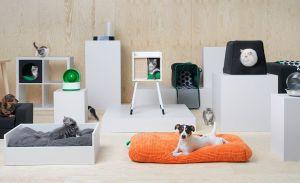 Белая мебель для животных - фото - 31473