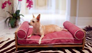 Розовая мебель для животных - фото - 31477