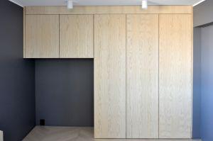 Шкафы распашные - фото - 31681