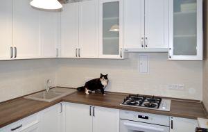 Недорогие кухни - 32727