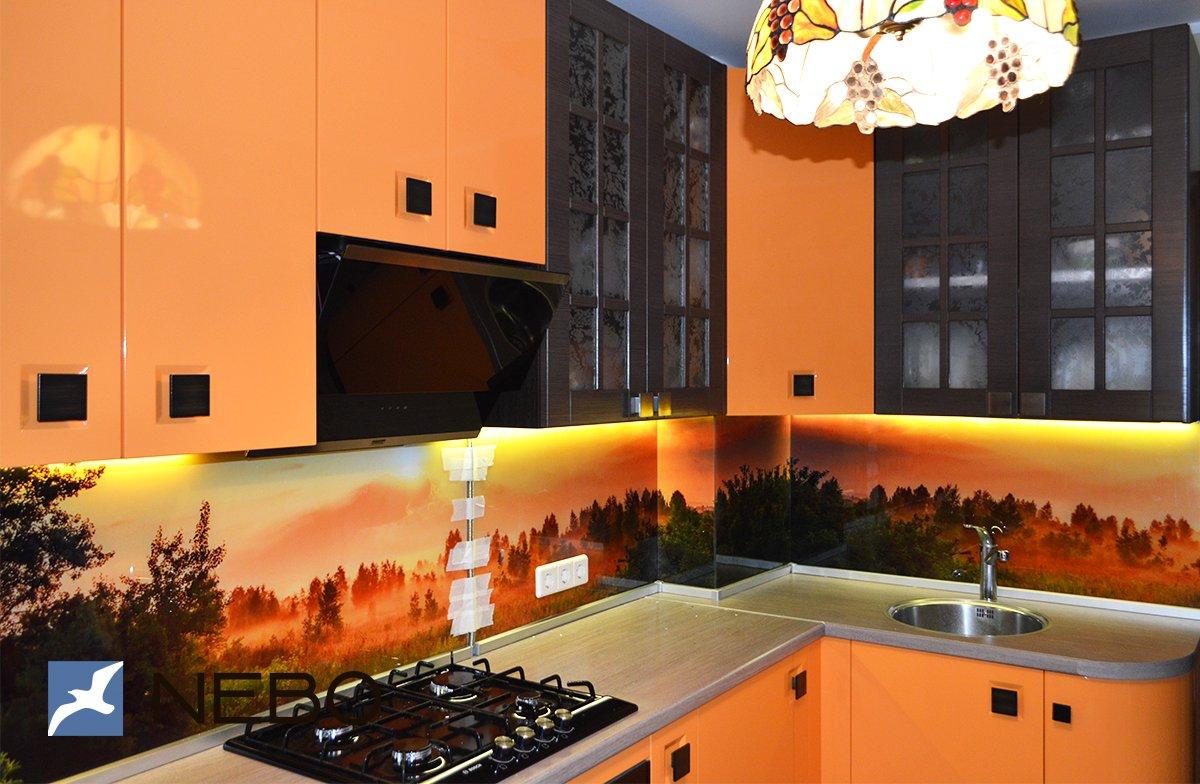 удачной скинали для бело оранжевой кухни цветы фото переживала нечто