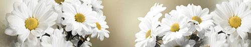 Скинали - Большие белые ромашки