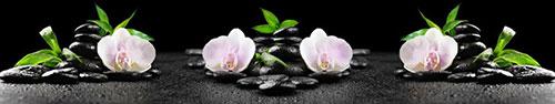 Скинали - Нежно-розовая орхидея на камушках спа (избранный фокус)