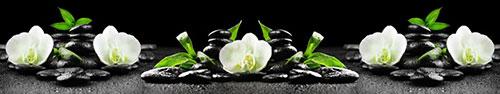 Скинали - Орхидея в камнях с бамбуком и каплями (избранный фокус)