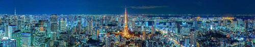 Скинали - Ночной город Токио