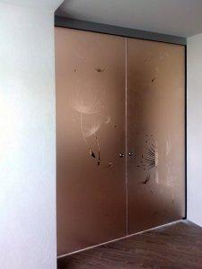 Стеклянные двери - фото - 22956