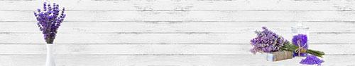 Скинали - Свежая лаванда на фоне белой стены