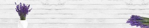 Скинали - Ароматная лаванда на светлом фоне