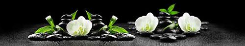 Скинали - Белые орхидеи на дзен камнях