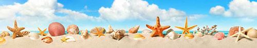 Скинали - Ракушки в песке