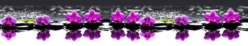 Скинали - Камушки с орхидеями на воде