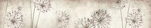 Скинали - Макро одуванчиков на состаренном фоне