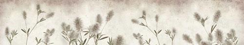 Скинали - Клевер пашенный на состаренном фоне
