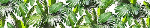 Скинали - Листья тропических растений