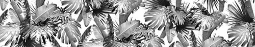 Скинали - Листья тропических растений в черно-белом варианте