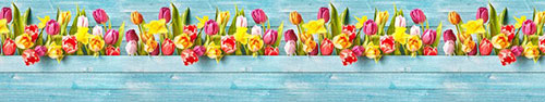 Скинали - Разноцветные тюльпаны на фоне деревянных досок
