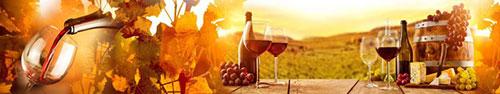 Скинали - Вино и виноград на столе