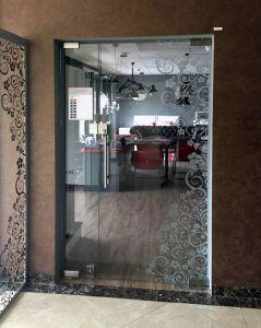 Стеклянные двери - фото - 31794
