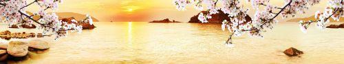 Скинали - Закат над морем с цветущими веточками на первом плане
