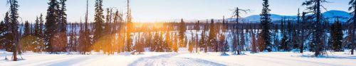Скинали - Панорама на горной поляне зимой