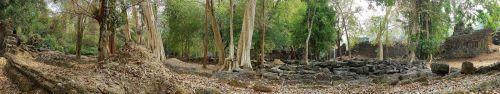 Скинали - Старинный сад в Камбодже