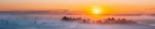 Скинали - Туманный рассвет