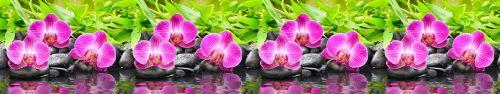 Скинали - Пурпурная орхидея на базальтовых камушках
