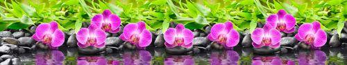Скинали - Пурпурные орхидеи на базальтовых камушках