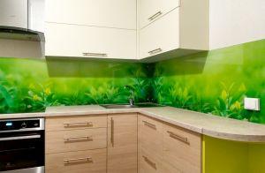 Растения для скинали в интерьере кухни - 33357