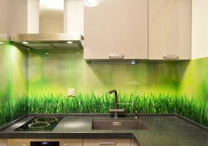 Растения для скинали в интерьере кухни - 33448