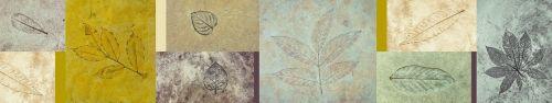 Скинали - Отпечатки листьев на фрагментах стен