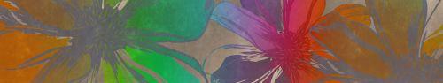 Скинали - Векторные цветы в радужной окраске