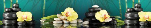 Скинали - Прекрасная желтая орхидея на камушках дзен