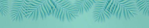 Скинали - Векторные ветки пальмы