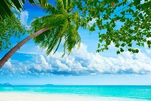 Фотопечать - Море и пляж - 24856