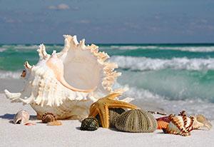 Фотопечать - Море и пляж - 24871