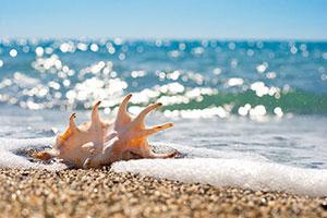 Фотопечать - Море и пляж - 24877