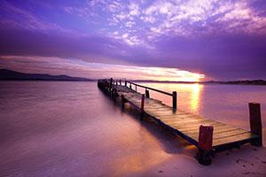 Фиолетовые изображения - 25391
