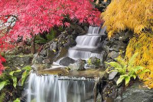 Фотопечать - Водопады - 25240