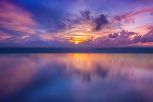 Фиолетовые изображения - 25137