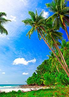 Фотопечать - Море и пляж - 25757