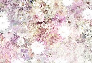 Фотопечать - Цветы - 24015