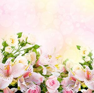 Фотопечать - Цветы - 24076