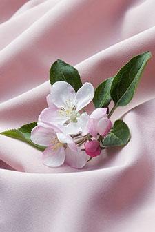 Розовые изображения - 24149