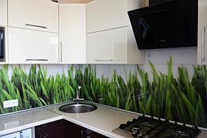 Растения для скинали в интерьере кухни - 22167