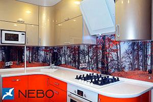Скинали для оранжевой кухни - 21916