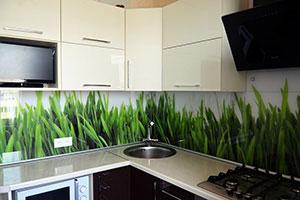 Растения для скинали в интерьере кухни - 22202