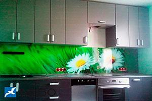 Ромашки для скинали в интерьере кухни - 21508