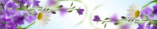 Скинали - Красивое сочетание белой ромашки и фиолетовых полевых цветов