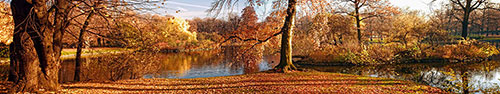 Скинали - Осенний парк в Нью-Йорке